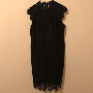 Black lace cap sleeve knee length dress NWT